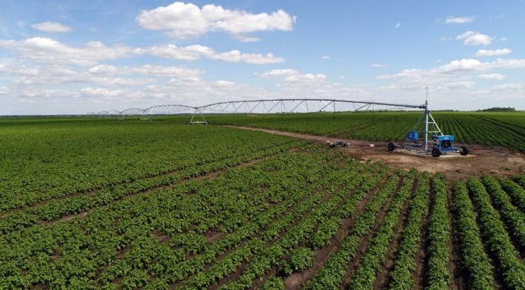 Магаданская область в пятерке российских лидеров по доведению федеральных средств до аграриев